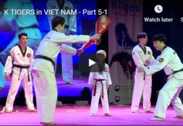Korean taekwondo Demonstration